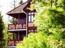Hotel județul Borsod-Abaúj-Zemplén, Hotel Ezüstfenyő
