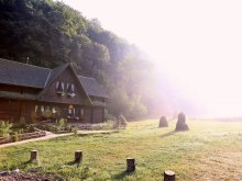 Accommodation Voineasa, Dacica Guesthouse
