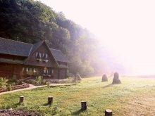 Cazare Munții Retezat, Pensiunea Dacica