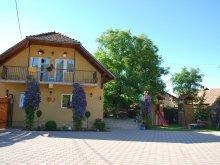 Apartament Șicasău, Pensiunea Soare și Luna