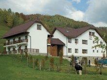 Bed & breakfast Braşov county, Hanul cu Noroc Guesthouse