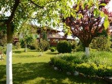 Accommodation Petreștii de Jos, Casa Moțească Guesthouse