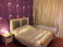 Accommodation Luna de Sus, Viena Guesthouse