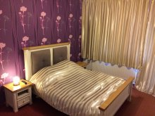 Bed & breakfast Băile Figa Complex (Stațiunea Băile Figa), Viena Guesthouse