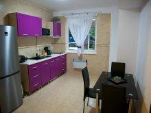 Apartament Fântânele, Garsoniera Allegro