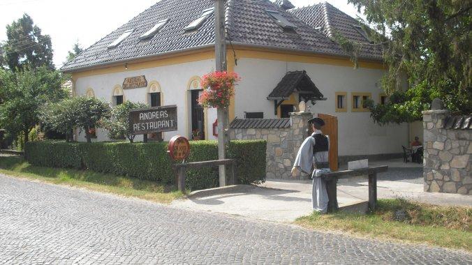 Andreas Wellness and Borház Guesthouse Badacsonytördemic
