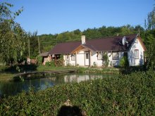 Guesthouse Kiskőrös, Édenkert Tavi House