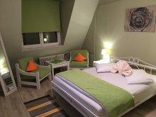Accommodation Boroșneu Mic, Bradiri House Apartment