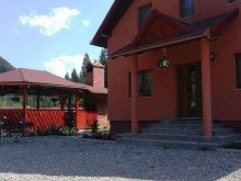 Accommodation Bălănești, Pap Vila