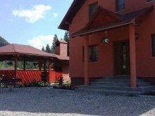 Villa Kománfalva (Comănești), Pap Villa