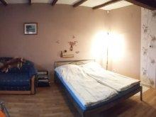 Accommodation Tiszapüspöki, Norbi Apartments