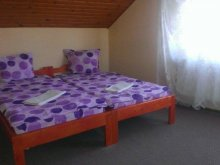 Accommodation Băile Balvanyos, Pajen Motel