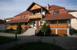 Accommodation Cristuru Secuiesc, Tolerancia Hostel