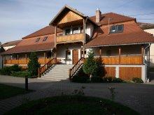Accommodation Sepsiszentgyörgy (Sfântu Gheorghe), Tolerancia Hostel
