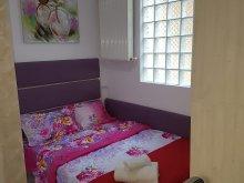 Accommodation Racovița, Yasmine Apartment
