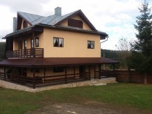 Vacation home Ineu, Apuseni Chalet