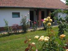 Accommodation Tiszaroff, Százéves vályogház Guesthouse