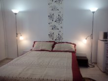 Accommodation Cugir, Camelia Apartment