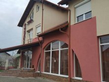 Accommodation Valea Mare, Coral B&B