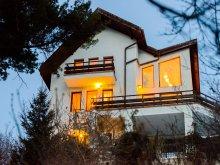 Villa Csíkdánfalva (Dănești), Paradise View Villa