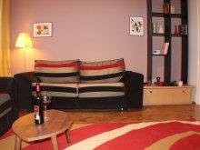 Accommodation Racovița, Boemia Apartment