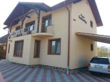 Package Budacu de Jos, Infinity House