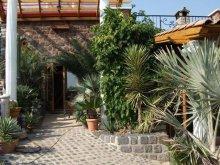 Cazare Balatonalmádi, Apartament Egzotikus Kert Levendula