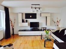 Apartman Satu Nou (Glodeanu-Siliștea), Unirii Stylish Apartman