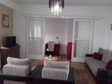 Accommodation Bistrița, Transilvania Apartment