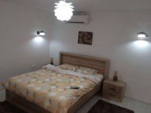 Accommodation Bacău county, Bogdan Apartment