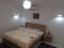 Accommodation Puricani, Bogdan Apartment