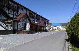 Motel Silvașu de Sus, Vip Motel és Étterem