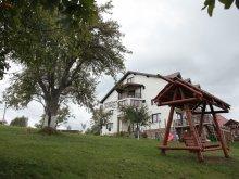 Pensiune Dâmbovicioara, Pensiunea Casa Tăbăcaru