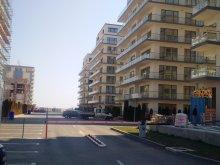 Apartament Fântânele, Garsoniera De Silva