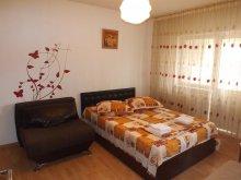 Apartament România, Garsoniera Trend