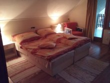 Accommodation Tiszatelek, Saci Guesthouse