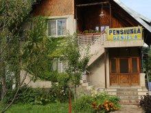 Szállás Valea Mărului, Daniela Panzió