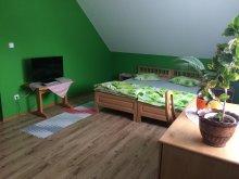 Cazare Borzont, Apartament Csíki