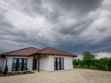 Accommodation Tășnad, Primăverii Guesthouse