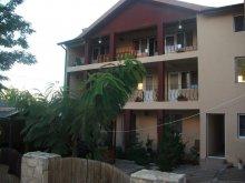 Accommodation Vulturu, Sellina Guesthouse