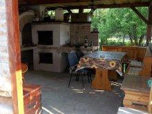 Accommodation Nagydobsza, Apartment Nagyatád
