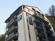Accommodation Ghelinta (Ghelința), Belfort Hotel