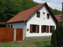 Cazare Plopu, Casa de vacanță Nagy Sándor