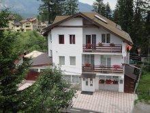 Accommodation Sighisoara (Sighișoara), Brianna Vila