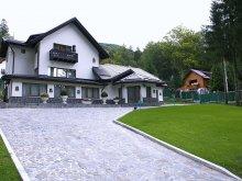 Villa Ciupa-Mănciulescu, Princess Of Transylvania Villa