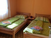 Accommodation Tiszatarján, Sirály Apartment