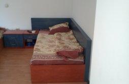 Hostel Șușani, Motel Angelo King