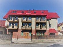 Accommodation Alexandru Odobescu, Tichet de vacanță, A&T Studios Vila