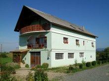 Pensiune județul Maramureş, Tichet de vacanță, Pensiunea Abigél