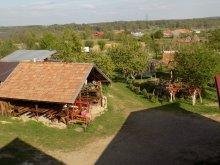 Pensiune Godeanu (Obârșia-Cloșani), AgroPensiunea Plaiul Castanilor